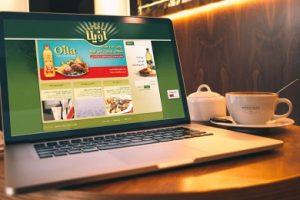 طراحی سایت برند اویلا